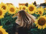 viral-video-bunga-matahari-mengeluarkan-suara-hasilkan-alunan-suara-layaknya-musik-klasik.jpg