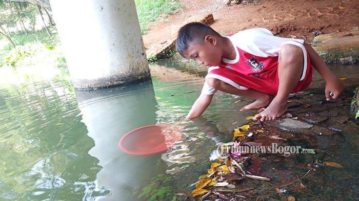 Cerita Anak Pencari Udang di Danau Situ Leutik Dramaga