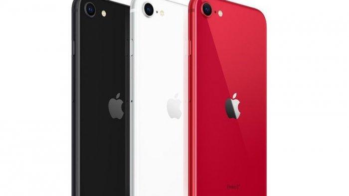 Intip Spesifikasi Lengkap iPhone SE 2020, Harga Mulai Rp 6,3 Jutaan