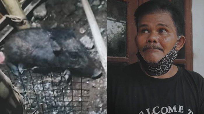 Martaih cerita kesaksian detik-detik menangkap babi (Youtube Rana Films)