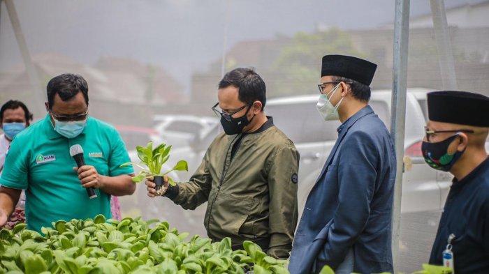 Dorong Kemandirian Sektor Pertanian di Pondok Pesantren, Mentan : Manfaatkan Setiap Jengkal Lahan