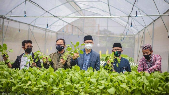 Menteri Pertanian Syahrul Yasin Limpo bersama Wali Kota Bogor Bima Arya dan Anggota DPR RI Ecky Awal Mucharam menghadiri peresmian Greenhouse ABN Farm