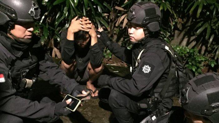 Edarkan Tembakau Gorilla, Pemuda Asal Jaksel Ini Gelagapan Diciduk Anggota Brimob