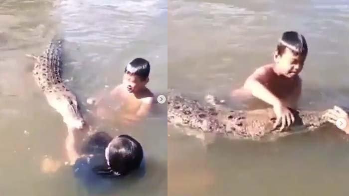 Heboh Video Anak-anak Main Bareng Buaya di Sungai, Panji Petualang Bongkar Fakta Sebenarnya