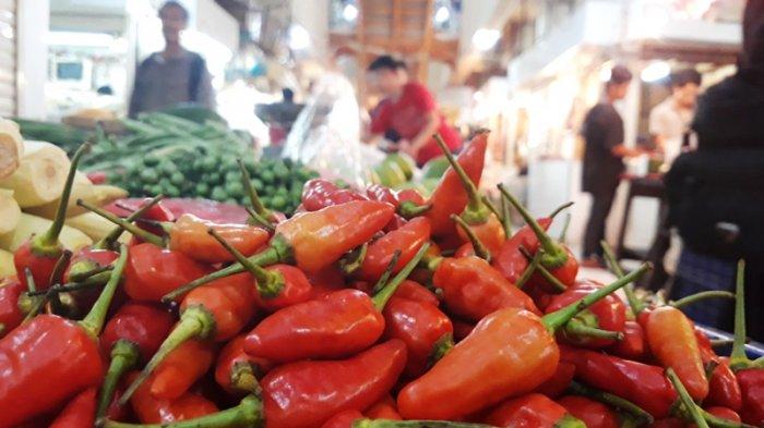 Tips dan Trik - Cara Merawat Tanaman Cabai Agar Tumbuh Lebat, Pakai Air Campuran Garam dan Micin