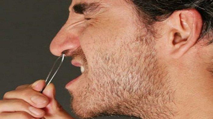 Ini Sederet Bahayanya Kalau Sering Cabut Bulu Hidung, Stop Mulai Sekarang !