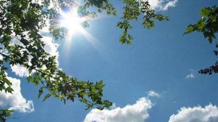 BMKG: Bogor Hari Ini Cerah hingga Sore, Malam Hari Berawan