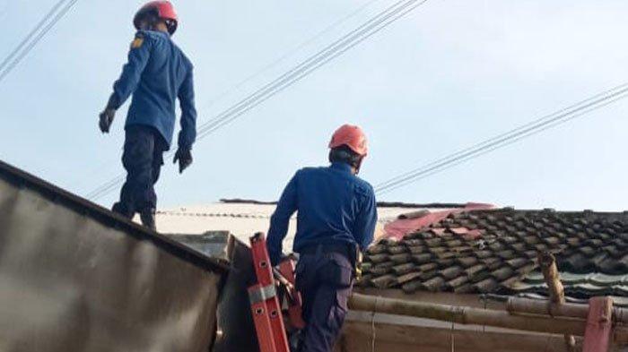 Tim Rescue Damkar Kabupaten Bogor Turun ke Lubang Sumur Demi Selamatkan Kucing Oranye