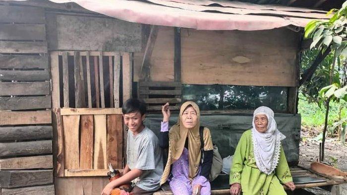 Deni Mulyadi Pelajar Penjual Ayam Jago Asal Bogor Viral, Sukarelawan Berdatangan