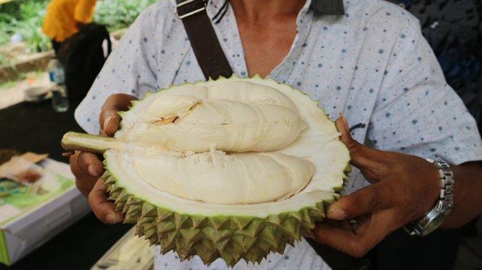 Terkenal Lezat, Inilah 6 Fakta Kesehatan Mengenai Buah Durian