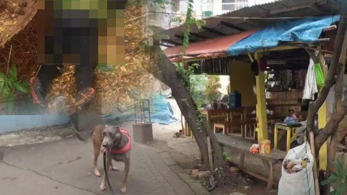 Sebelum Meninggal, Editor Metro TV Sering ke Warung yang Terlacak Anjing K9, Ini Kata Polisi