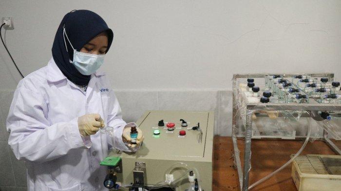 Produk Eucalyptus Balitbang Kementan Berhasil pada Uji Klinis SARS-CoV2