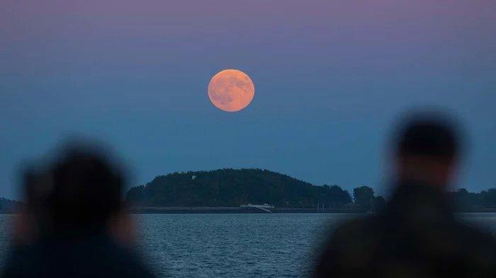 8 Hal yang Mesti Diperhatikan Saat Saksikan Gerhana Bulan 28 Juli 2018