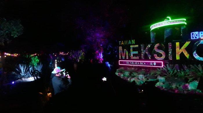 Wisata Malam di Kebun Raya Bogor, Sampaikan Edukasi Konservasi Melalui Cahaya