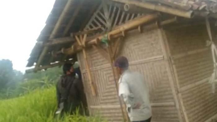 Dua Sejoli Mesum di Gubuk Tengah Sawah Ternyata Masih SMP, Kepergok saat Sudah Lepas Pakaian