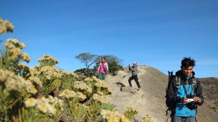 Jika Wisata Gunung Sudah Kembali Buka, Ini Pesan untuk Pendaki dan Pemandu