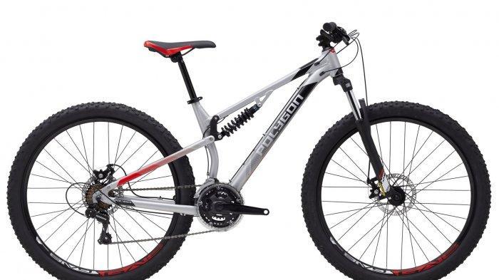 Daftar Harga Sepeda Polygon Bulan Juli 2020, Sepeda Anak Mulai Rp 950 Ribu