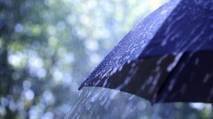 Prakiraan Cuaca, Siang Ini Wilayah Bogor Diprediksi Akan Diguyur Hujan Terus Menerus