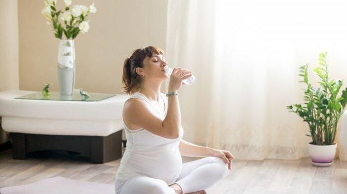 Wajib Tahu ! Ini Deret Bahaya dan Efek Samping Sering Minum Teh Bagi Ibu Hamil