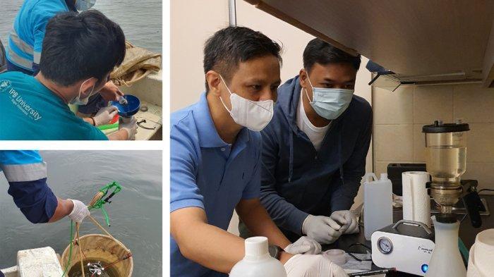 Zooplankton di Teluk Jakarta Diteliti, Mahasiswa Program Doktoral IPB University Lakukan Tes DNA