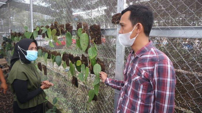 Pengurus Ikatan Wanita Pengusaha Indonesia (IWAPI) Provinsi Sulawesi Selatan mengunjungi Pusat Penjualan Tanaman Hias di Kawasan Bogor Nirwana Residence, Kota Bogor, Kamis (18/2/2021).