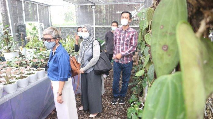 Kunjungi Pusat Penjualan Tanaman Hias di Kota Bogor, IWAPI Sulsel Terpesona Lihat Banyak Koleksi