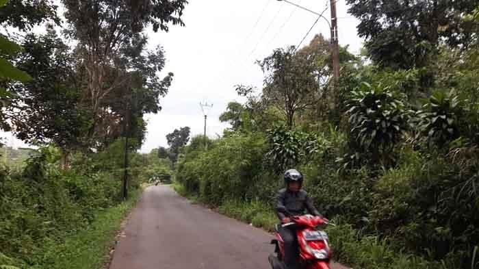 Lampu Penerangan Jalan Umum (PJU) di Jalan Ciapus - Sukaresmi, Kecamatan Tamansari, Kabupaten Bogor dikeluhkan masyarakat karena tak berfungsi.