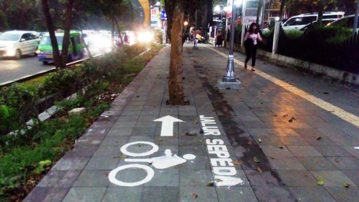 Tanda di Jalur Khusus Sepeda Ini Bikin Bingung, Perhatikan Tanda Panah di Rambu Ini