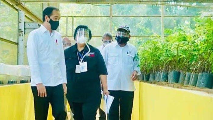BREAKING NEWS - Kunjungan Kerja ke Rumpin Bogor, Jokowi Bagikan Sembako dan Masker ke Warga