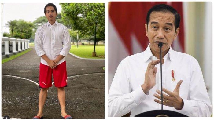 Warganet Penasaran dengan Status Pekerjaan Jokowi di KTP, Kaesang Bocorkan SIM Presiden di Twitter
