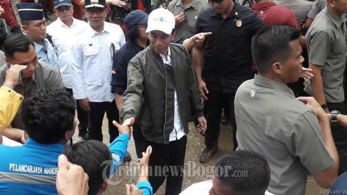 Jokowi Siapkan Pohon Jengkol dan Petai untuk Ditanam di Lokasi Longsor Sukajaya Bogor