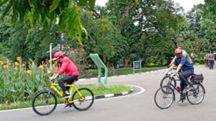 Jokowi Asyik Bersepeda di Kebun Raya Bogor Jelang Siang Ini