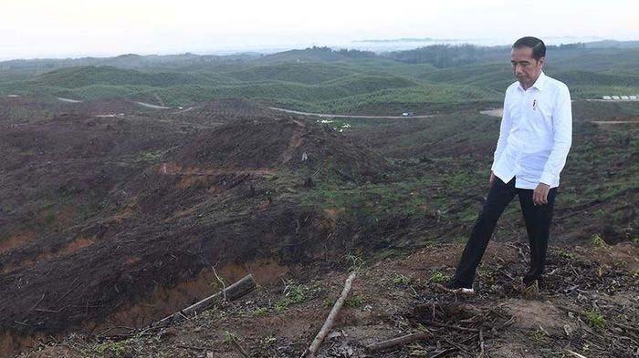 Presiden Jokowi Jamin Ibu Kota Baru Nanti Bebas Banjir dan Macet