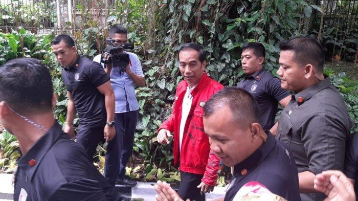 Libur Natal 2019, Jokowi Olahraga di Kebun Raya Bogor Pakai Jaket Merah
