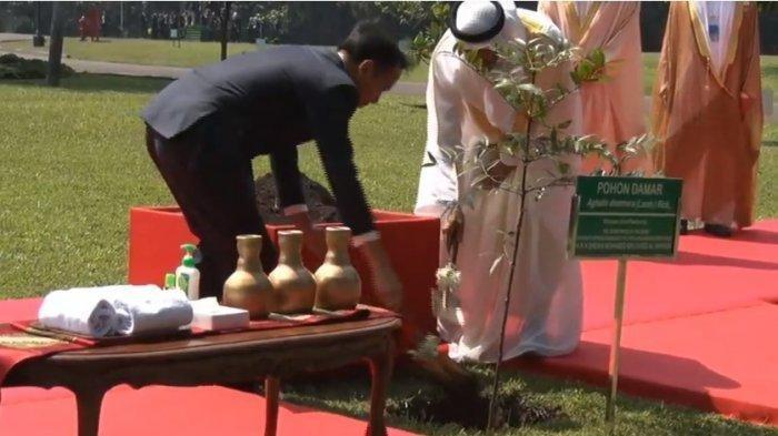 Bertemu Jokowi di Istana Bogor, Putra Mahkota Abu Dhabi Bawa Investasi Rp 136 Triliun