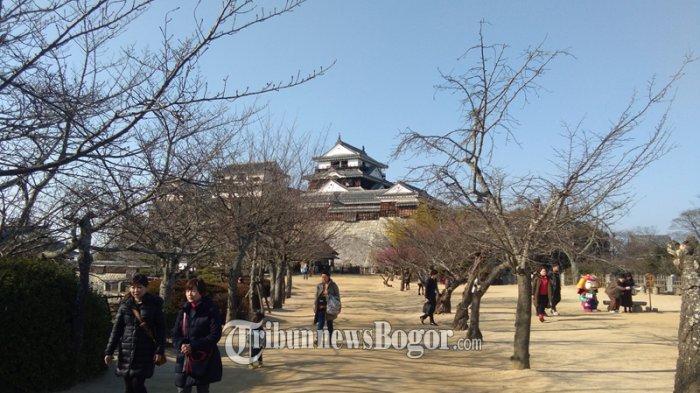 Menjelajah Keindahan Kastil Matsuyama di Jepang, Kastil Berusia 400 Tahun Dipenuhi Bunga Sakura