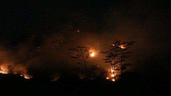 Damkar Kabupaten Bogor Pastikan Kebakaran Lahan di Tanjungsari Tidak Merembet ke Pemukiman Warga