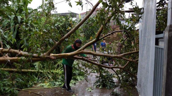 Hujan Disertai Angin Kencang, Rumah Warga di Megamendung Rusak, Sejumlah Pohon Tumbang