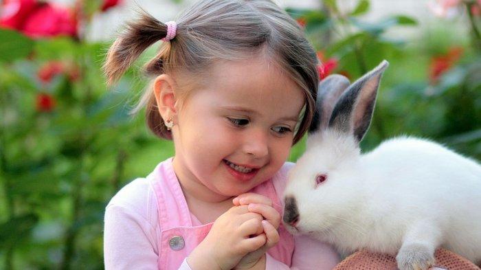 Rabbit Festival, Berbagai Jenis Kelinci Unik Dipamerkan di Mal Boxies 123 Bogor