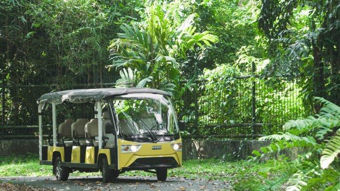 Jaga Konservasi Tumbuhan, Kebun Raya Bogor Operasikan Mobil Bertenaga Listrik