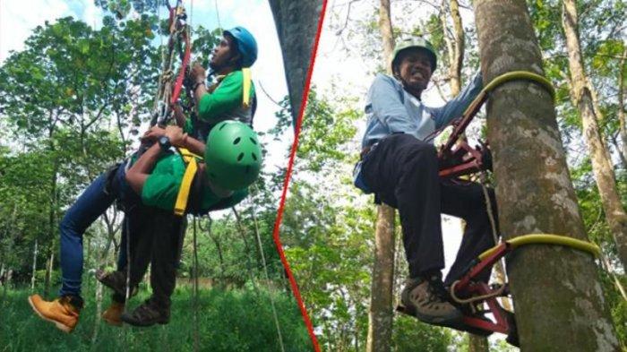 TRIBUN WIKI - Komunitas Unik Di Bogor, Melompat Di Atas Tali Hingga Panjat Pohon
