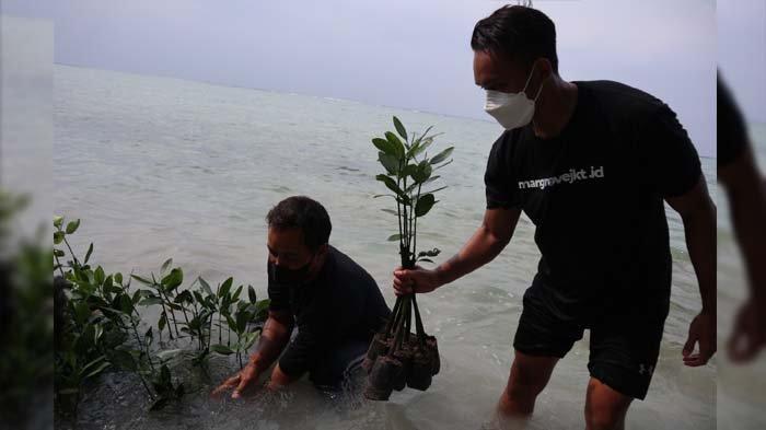Libatkan Generasi Muda, Komunitas Karbon Biru Tanam Mangrove dan Lamun di Pulau Tidung