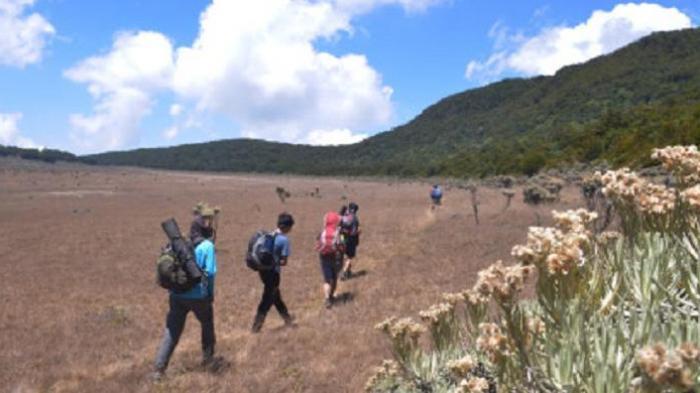 Banyak Pendaki Ilegal, Gunung Gede Pangrango Kembali Ditutup