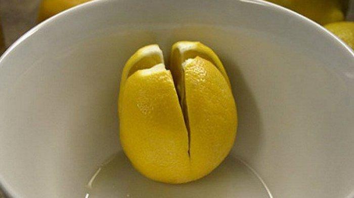 Kembangkan Produk Buah Lemon, SMKN 1 Cibadak Dapat Solusi Pengolahan Limbah dari IPB University