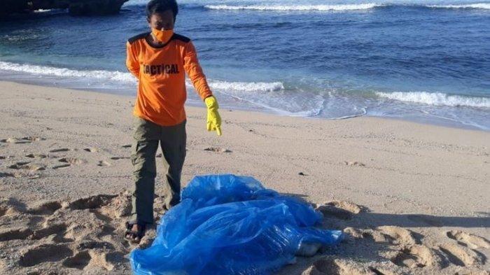 Jenazah Bocah Tanpa Kepala Ditemukan di Pantai Watu Kodok Gunungkidul, Pakai Celana Biru Merk Java