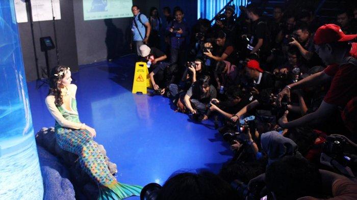 Berhadiah Total Puluhan Juta Rupiah, Ini Cara Mengikuti Lomba Foto Satwa IAPC 2018