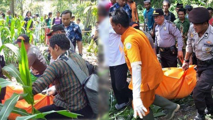 Pelaku Pembunuhan Perempuan Tanpa Busana di Kebun Jagung Ditangkap, Baru Bebas dari Penjara