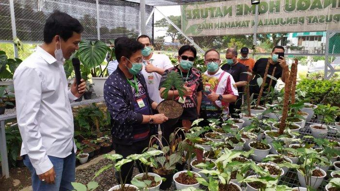 Menteri Pertanian (Mentan) Syahrul Yasin Limpo (SYL) mengunjungi Pasar Tanaman Hias Jungle Fest Minaqu Home Nature di kawasan Bogor Nirwana Residence (BNR), Bogor Selatan, Kota Bogor, Minggu (3/1/2021).