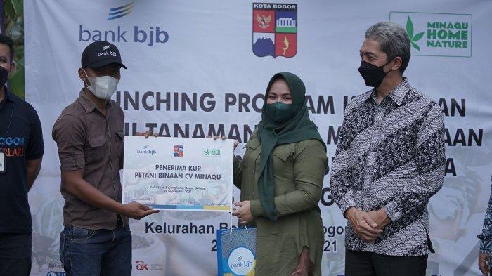 Majukan Petani Tanaman Hias, Pemkot Bogor, Minaqu dan BJB Kolaborasi