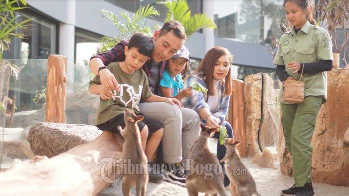 Liburan Seru di Mini Zoo Hotel Royal Safari Garden, Bisa Kasih Makan Satwa Afrika